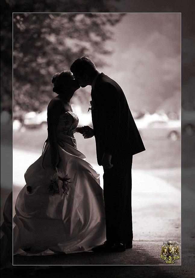 عروس و داماد رمانتیک