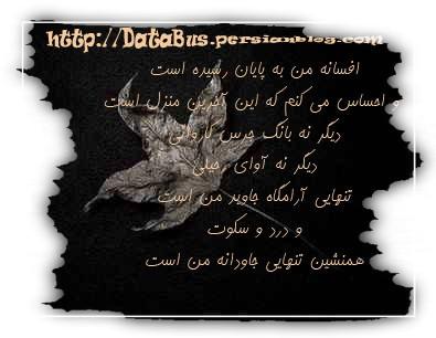 روز مرگ من ، شادی بزرگ تری از روز میلادم برایشان به ارمغان خواهد آورد ...